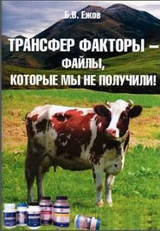 tf-ejov